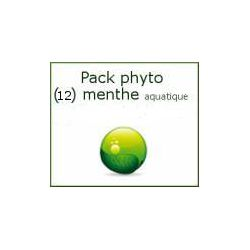 Pack Menthe