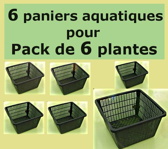 Paniers pour le Pack de 6 plantes