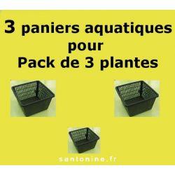 Paniers pour Pack de 3 plantes