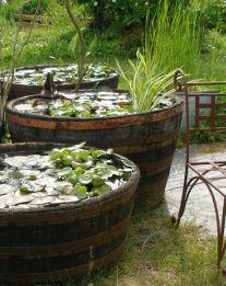 un mini bassin