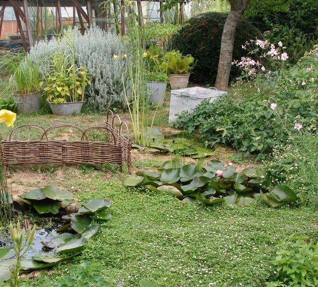 Am nagement d 39 un mini bassin santonine plantes aquatiques - Petit bassin plastique villeurbanne ...