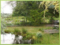 un des bassins de la pépinière santonine