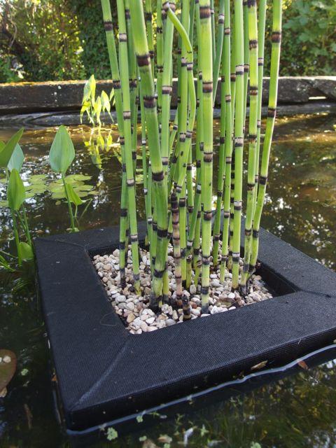 un esth tique radeau de 35cm x 35cm pour plantes aquatiques. Black Bedroom Furniture Sets. Home Design Ideas